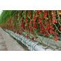 Fertilizantes Hidroponia,para 12000 Litros (sales Minerales)