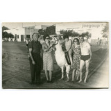 Foto Costumbre Tipica Llama Playas Miramar Buenos Aires 1967