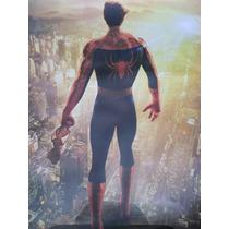 Posters Del Hombre Araña, Película 2