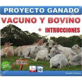 Proyecto Ganaderia Cria Ganado Vacuno Bovino = Carne + Leche
