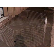 Canil, Gatil,coelhos Com Pintura Epóxi Anti Ferrugem