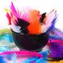 Penas Coloridas (100g) - Plumas E Penas