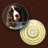 10753 - Cão Da Raça (english Springer Spaniel) - B. Ouro 24