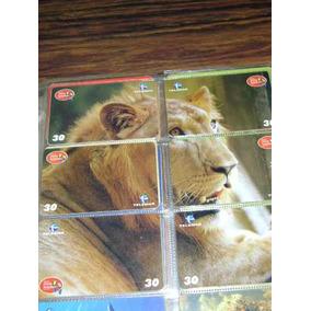 Serie Leão