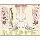 Mapa Da Reflexologia Dos Pés - Massoterapia E Fisioterapia