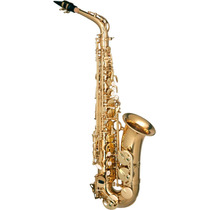 Saxofone Hofma By Eagle Sax Alto Mi Bemol + Estojo Luxo