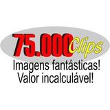 75 Mil Cliparts Vetores Fotos Fontes Icones - 4 Cds Em 1 Dvd
