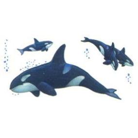 Adesivo Grande Parede Cartela Nº1 Coleção Baleias