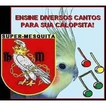 Cd Completo De Cantos Para Calopsitas + Brindes!!!