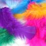 Penas Coloridas 200 Unidades - Plumas E Penas