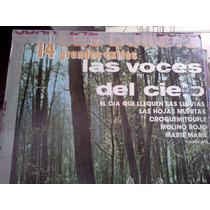 Les Djinns 14 Grandes Exitos Las Voces Del Cielo Lp Raro