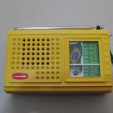 Rádio Receptor Portátil Companheiro Crp-21b 2 Faixas Am Fm