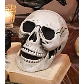 Cráneo Halloween Decoración Esqueleto Calavera Muerto Zombie