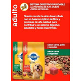 Pedigree 21k Adulto Alimento Balanceado Perro Pet Shop Beto