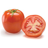 Sementes De Tomate Híb. Santa Cruz Bravo F1 - 1.000 Sementes