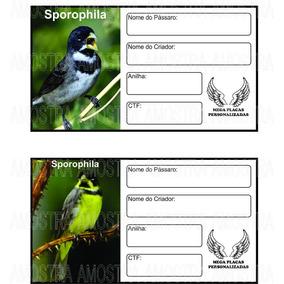Placa Identificação Pássaros 100 Unid. Frete Grátis + Brinde