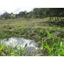 Vende-se Terreno No Sul De Minas.