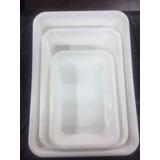 Fuenton Batea Carnicera 30x20 Plastico Reforzado
