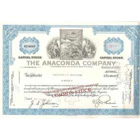 Apolice - The Anaconda Company Ano 1969 State Of Montana