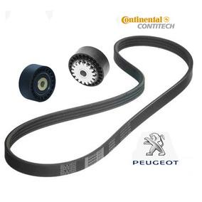Kit Correia Alternador Poly V Peugeot 206 1.0 16v 01/06 C/ar