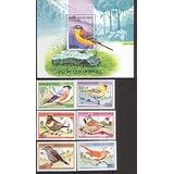 Benin 1997 - Pássaros Canoros - 6 Selos + Bloco
