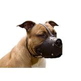 Pit Bull Terrier Pitbull Cesta Secure Hocico Del Perro De C