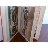 Postales Antiguas Versailles- 1919-c/u.