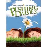 Box 3 Dvd Série Um Toque De Vida, Pushing Daisies 1ª Temp,