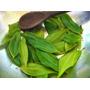 Folhas Secas Chá Canela De Velho50g Para Artrose,dores