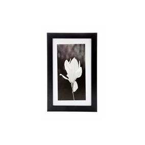 Quadro Orquídea Preto E Branco19 X 29 Cm
