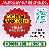 1000 Poster Carteles 4 Cartas Todo Color Couche 135 Grs