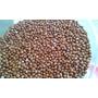 Feijão Guandú Anão Precoce - 2.500 Sementes (cv Iapar43)