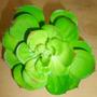 Flor Artificial Cactus E Suculentas