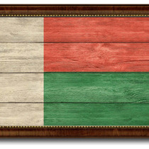 Madagascar Country Textured Flag Print With Brown Gold Frame