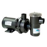 Bomba Para Piscina Nautilus 1/3 Cv 110/220 V Motor Weg