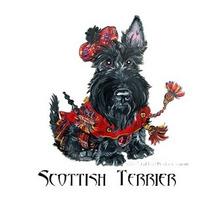 Cobertura - Scottish Terrier C| Pedigree Taxa Ou Filhote