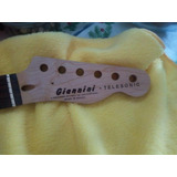 Guitarra Giannini Telesonic - Waterslide Do Logotipo