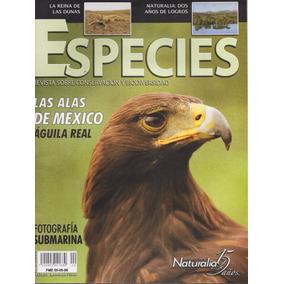 Especies - Conservación Y Biodiversidad - Águila Real