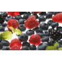 Mix De Frutos Rojos Del Bosque Iqf Congelados Premium