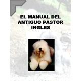 Conoce Educa Y Adiestra A Tu Antiguo Pastor Ingles + Regalos