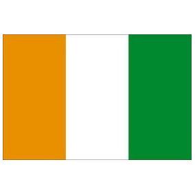 Blusinha Viscolycra Com Strass Bandeira Da Costa Do Marfim