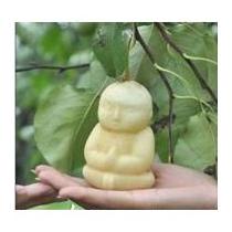 Molde En Forma De Buda Para Manzanas, Peras, Frutas, Verdura