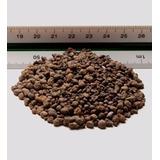 Leca - Arcilla Expandida - Oferta Bolsa 15dm3 - (15litros)