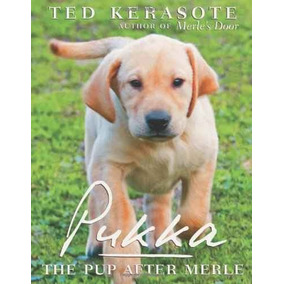 Pukka: El Perrito Después De Merle