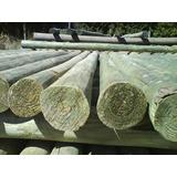 Poste De Eucaliptus 12 A 15 Cm X 2,20 Mts Madera Tratada