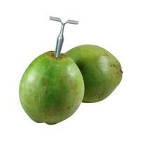 1 Peça Do Abridor / Furador De Coco Verde Em Aço Galvanizado