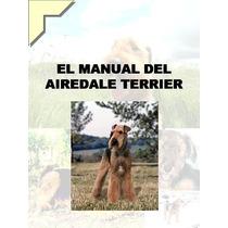 Airedale Terrier Conocelo + Adiestramiento Y Educacion ¡¡