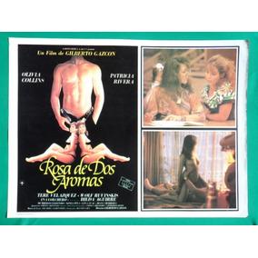 Rosa De 2 Aromas Olivia Collins Sexy Patricia Rivera Cartel