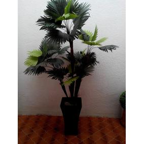 Palma Abanico 1:80 Altura Con Maceta Fibra De Vidrio