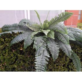 Planta Helecho Artificial